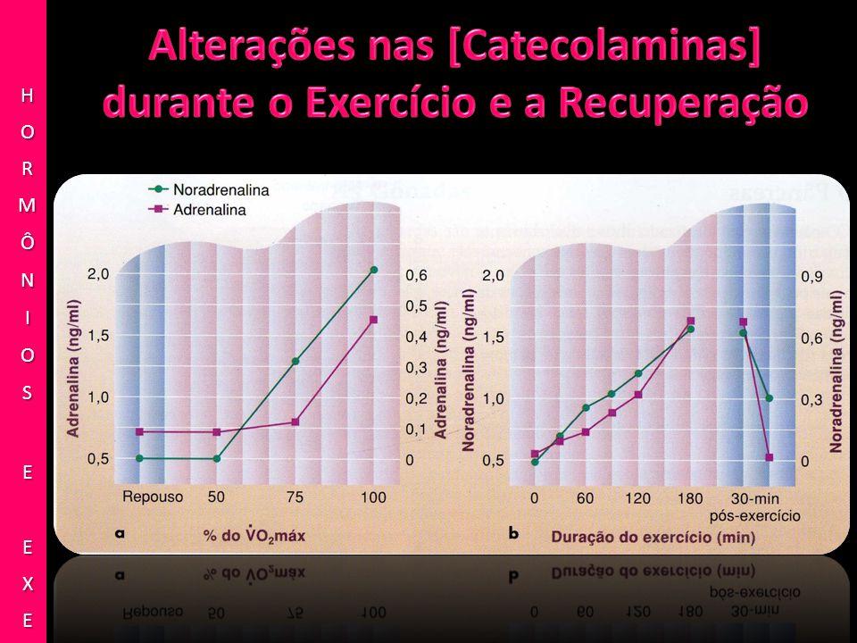 Alterações nas [Catecolaminas] durante o Exercício e a Recuperação